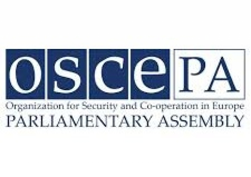 OSCE PA human rights leaders urge focus on the safety of journalists